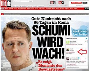 """""""Bild ist blöd"""" im Twitter-Feed von Bild.de"""