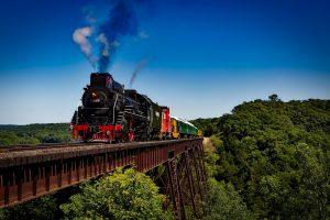 Eine Lokomotive fährt durch ein Waldstück. Der Himmel ist strahlend blau.